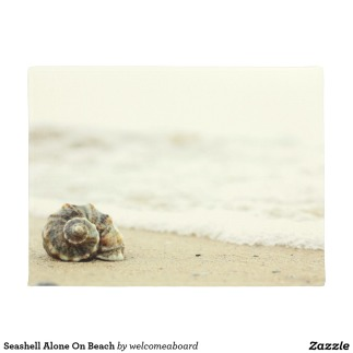 seashell_alone_on_beach_doormat-r77201b4f8030415e989e8e9a36f7affe_jftbl_1024