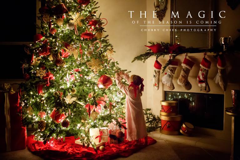 The Season of Light and Gratitude