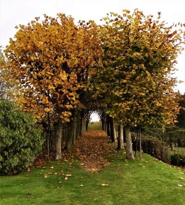 Arbor at Rhinefield